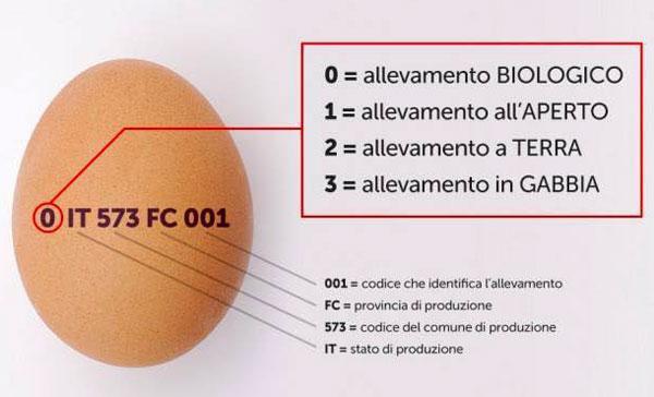 Uova contaminate: scoperti altri due casi
