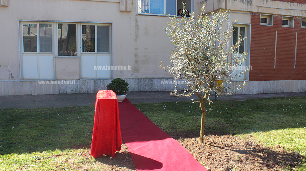 Taglio del nastro per il giardino dei giusti all istituto comprensivo sant eufemia lamezia - Il giardino dei giusti ...