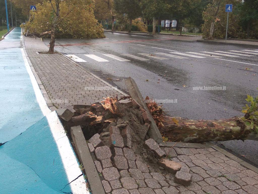 Pioggia e vento, in Calabria si contano i danni